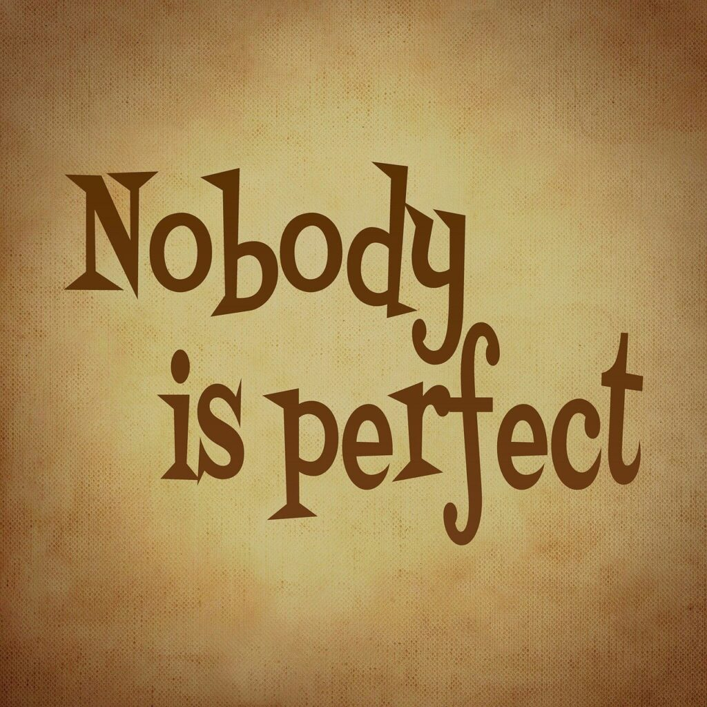 nobody is perfect, saying, perfect